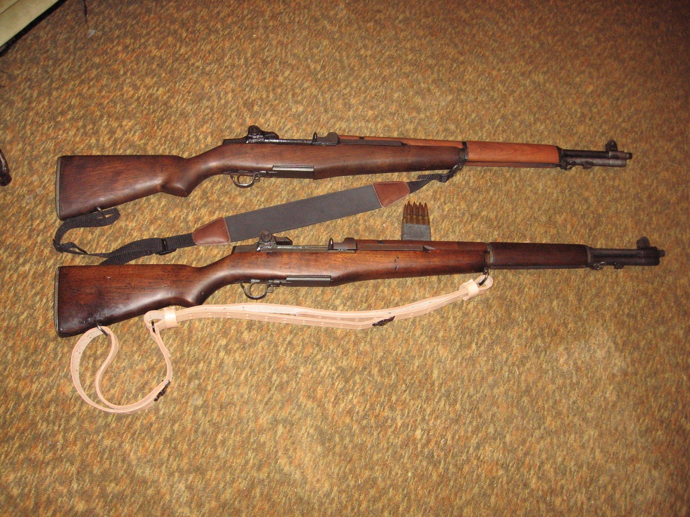 """Politically Correct"" Rifles-img_0551.jpg"